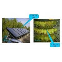 农副产品太阳能烘干系统