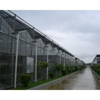 玻璃温室大棚设计安装一体化服务