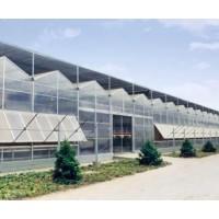 阳光板温室大棚|智能温室大棚设计安装