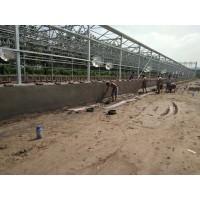 太阳能污泥干化处理系统